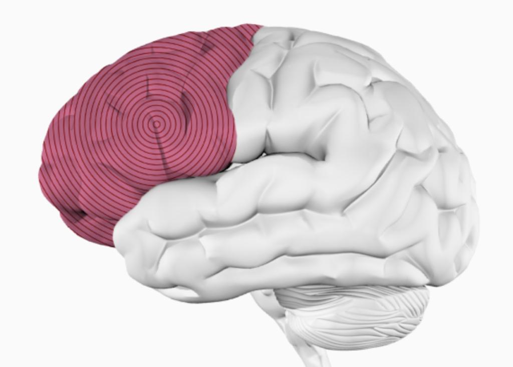 Прослушивание музыки — развивает мышление. Как музыка влияет на организм человека.